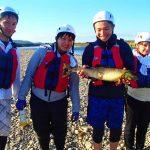 秋の風物詩 那珂川の鮭の遡上がはじまりました。